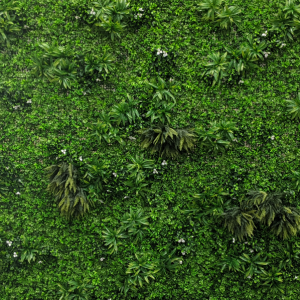 Lush Living Walls, Outdoor