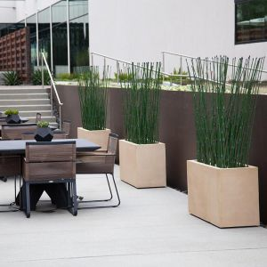 Indoor Artificial Horsetail Groves in Modern Planters