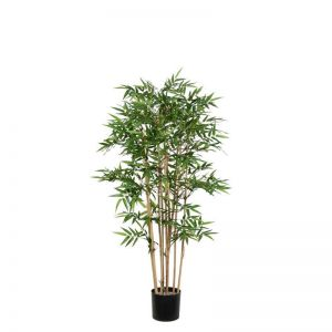4' or 5' Potted Oriental Bamboo Tree