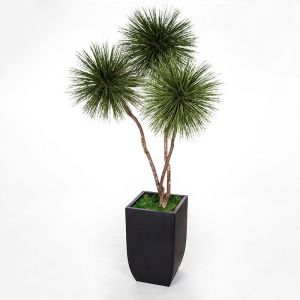 8' Preserved Grass Pom Pom Tree