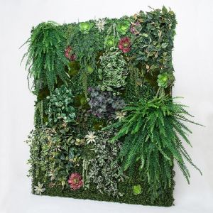 Replica Living Walls, Indoor