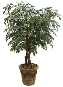 5' - 8' Artificial Ficus Tree, Outdoor Rated