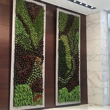 Artificial Plants Unlimited Project Gallery