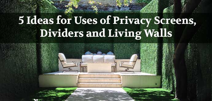 5 Ideas for using Privacy Screens and Living Walls
