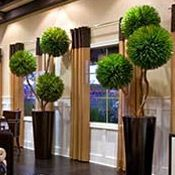 Artificial Pom Pom Topiaries