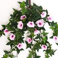 Faux morning glory vines