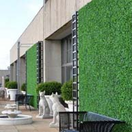 Fade-resitant outdoor living walls