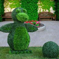 Custom designed topiaries