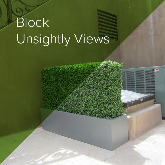 Blocking Unsightly Views with Hedges