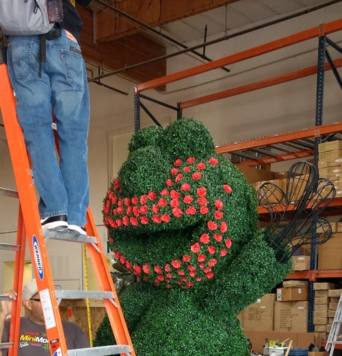 The making of Elmo Topiary